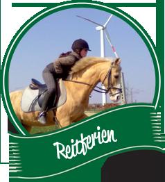 Reitferien Niederrhein Reitanlage Dümpenhof