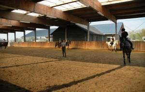 reitschule-niederrhein-training-01