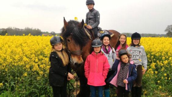 Kindergeburtstag auf dem Bauernhof in NRW